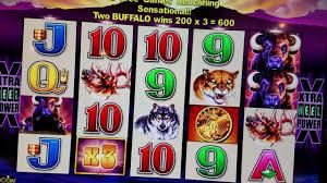 Hotel Silver Seven Buffalo Bonuscant Recording Silver Seven Hotel Casino Youtube