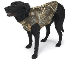 Browning Neoprene Dog Vest Size Chart Best Picture Of