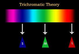 Theories of <b>Colour</b> Perception