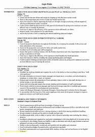 Top Result Executive Chef Resume Template New Sous Chef Education