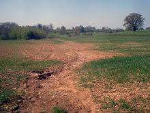 soil erosion  tilled farmland such as this is very susceptible to erosion from rainfall due to the destruction of vegetative cover and the loosening of the soil during