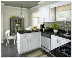Kitchen Cabinet Colors Ideas Unique Decoration