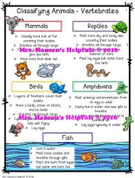 Best 25+ Animal classification ideas on Pinterest   Animal ...