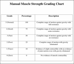 Mmt Grades Movements Manual Muscle Testing Goniometry Shoulder Complex