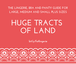 Yandy Size Chart Huge Tracts Of Land The Lingerie Bra And Panty Guide For