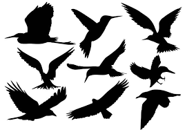 cute flying bird silhouette. Flying Bird Silhouette Vectors With Cute
