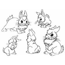 Simply do online coloring for baby bugs rolling a ball in baby looney tunes coloring page directly from your gadget, support for ipad, android tab or using our web feature. Top 15 Free Printable Bunny Coloring Pages Online