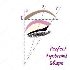 Perfect Eyebrow Chart Perfect Eyebrow Shape How To Create