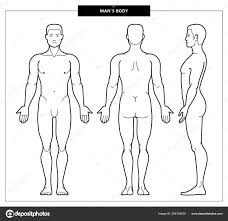 Mens Body And Anatomy Stock Vector Lazuin Gmail Com