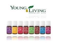 Иланг-иланг <b>Young Living Essential Oils</b> расходные материалы ...