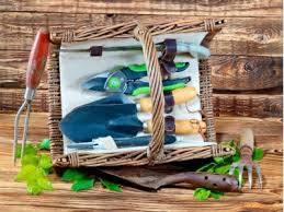 what to put in a garden gift basket