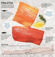 pros and cons of wild caught salmon vs farm raised