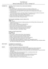 Sample Executive Resumes Radio Account Executive Resume Samples Velvet Jobs 16