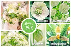 42 spring flowers inspired by pantone