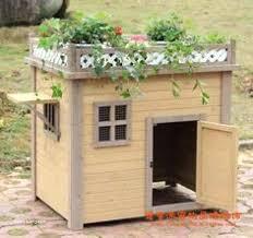 feral cat house diy outside plans lovely outdoor insulated fresh for winter elegant of
