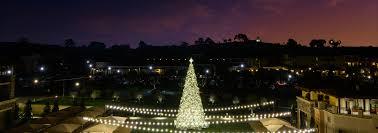 Napa Christmas Tree Lighting Napa Tree Lightings Meritage Resort Spa Tree Lighting