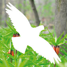 4 Aufkleber 35cm Weiß Habicht Vogel Fenster Tattoo Folie Warnvögel