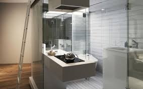 Download Astonishing Luxury Apartments Bathrooms Teabjcom - Small apartment bathroom decor