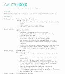 Resume For Financial Analyst Unique Reporting Analyst Sample Resume Reports Financial 48 48 Pdf Socialumco