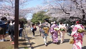 images?q=tbn:ANd9GcRbmrkFEvj18VoqLvubNWr4nY2hCBz68wOuxA&usqp=CAU - Bikin Betah Destinasi yang Wajib Mengunjungi Pada Prefektur Akita