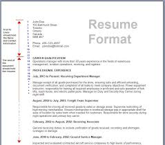 Payment Receiving Format Adorable Form Of Resume Application Format 48 R 48 Simple Besides A