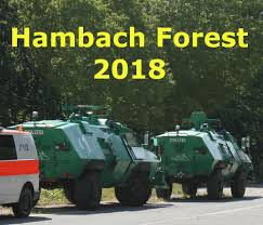 Image result for hambach forest eviction 6th sept