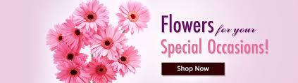 send flowers cakes gift items india 1 florist services florist xpress