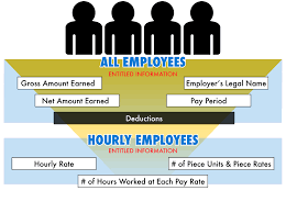 Wage And Hour Claims Wage Theft Payroll Lawyer