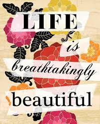 Breathtakingly Beautiful Quotes Best of Life Is Breathtakingly Beautiful Inspirational Quotes IMG
