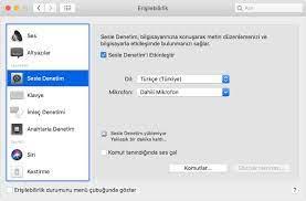 Mac'inizde Sesle Denetim'i kullanma - Apple Destek (TR)
