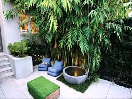 Courtyard Design Ideas Small Space Courtyard Garden Design Ideas