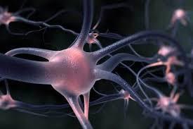 treat motor neurone disease says study