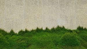 Gratis Stockfoto Van Achtergrond Bakstenen Muur Behang