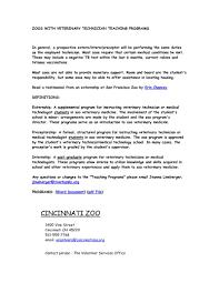 School Caretaker Cover Letter Import Sample Of Business Letter Writing