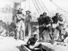 the middle passage explained and analysed essay by marvin hill the middle passage explained and analysed
