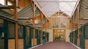 natural light and ventilation in horse barns why it matters you