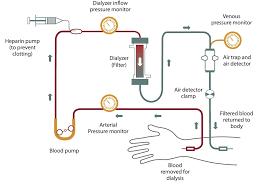 Dialysis Patient Diet Chart Hemodialysis Niddk
