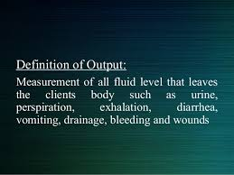 Intake And Output Chart Definition Intake And Output Chart