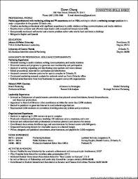 examples of resumes ideas about professional resume samples 81 amusing professional resume format examples of resumes