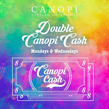 canopi north las vegas double canopi cash