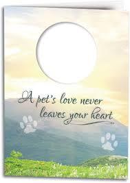sympathy card pet dog themed sympathy cards smartpractice veterinary
