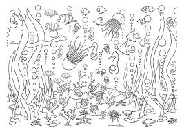 Small Picture 5 Underwater Coloring Pages diy Thought