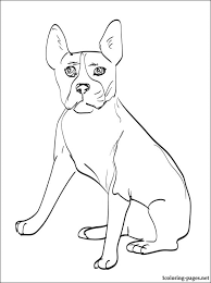 Small Picture Boston Terrier coloring page Coloring pages
