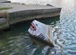 clever shark paint job random funny picture funny pictures clever shark paint job