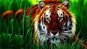 Animal Tiger 3D Wallpaper