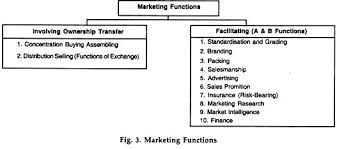 essay on marketing top essays on marketing management marketing functions