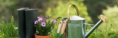 i need a gardener puhoi nz