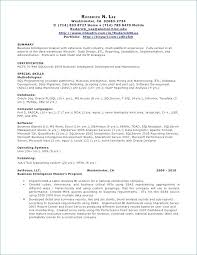 Sql Developer Resumes Pl Sql Developer Resume Sample Programmer Resume Web Developer