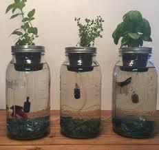 fascinating best indoor herb garden kit or hydroponic herb garden luxury indoor hydroponic garden kit beautiful
