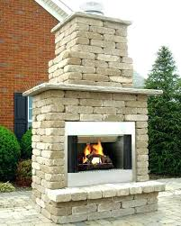 gas fireplace inserts direct vent natural s outdoor kits nz home depot
